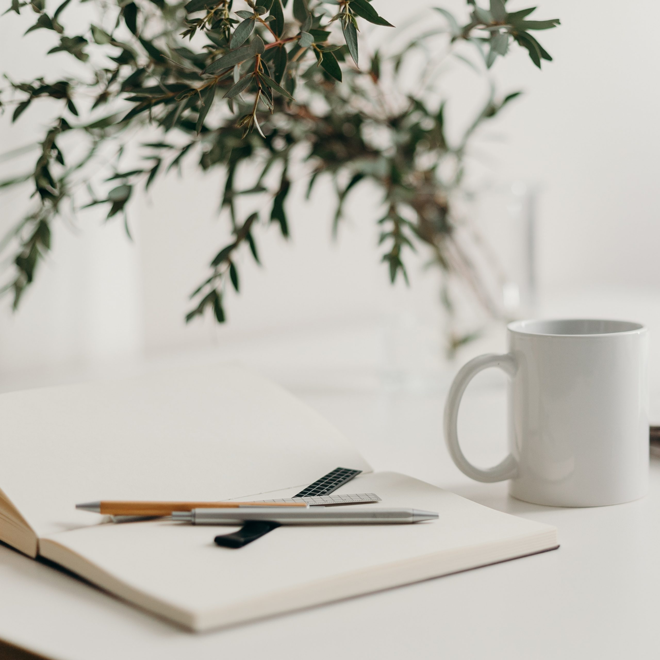 Note book, pencil, mug with branch in background